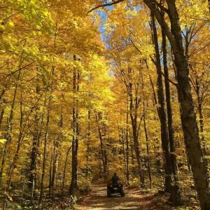 Flambeau Trail System - Fall